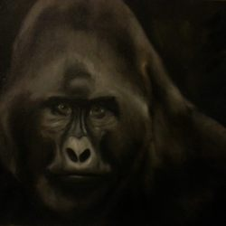 """Gorilla"", Oil (SOLD)"