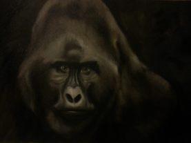 Gorilla - Oil