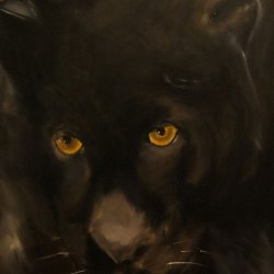"""Panther,"" Oil (SOLD)"